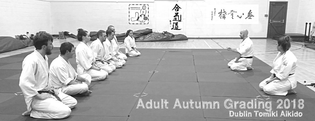 martial arts examination adults grading dublin