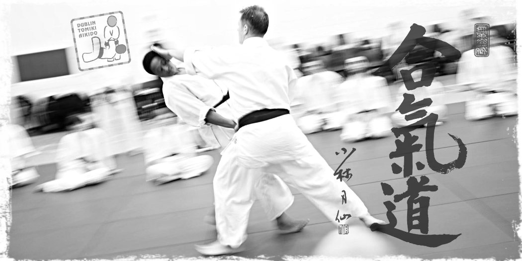 adult martial arts evening classes dublin