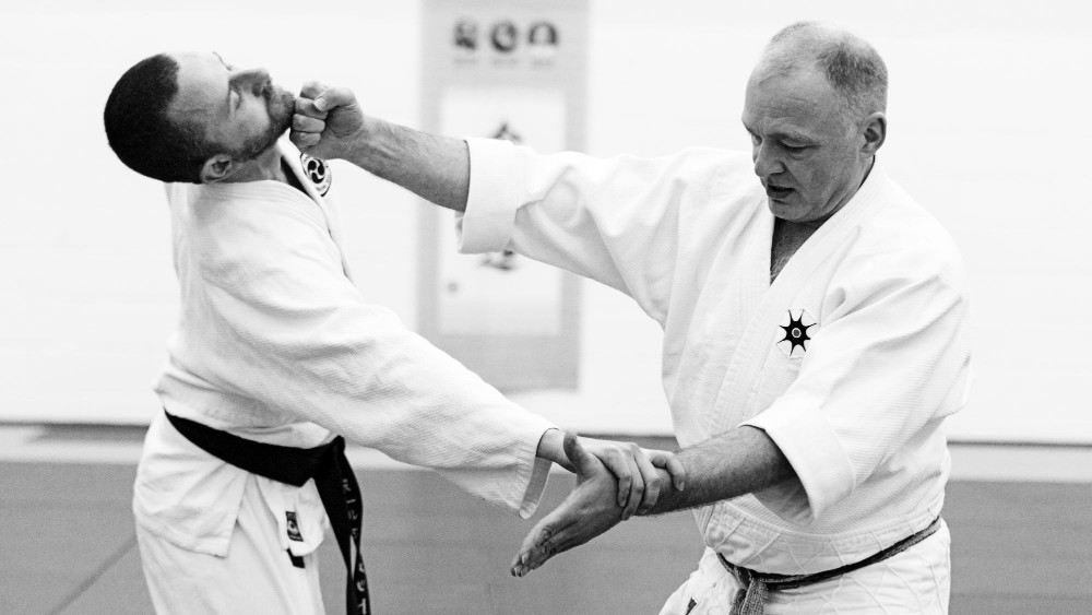 Dublin MArtial Arts Seminar Instructor  - Shaun Hoddy Sensei 7th Dan Tomiki aikido